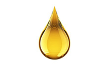 botanical_Essential_Oil