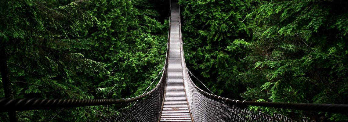 forst-path