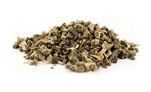 botanical_BlackCohosh
