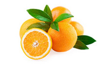 botanical_Orange_Peel_Oil