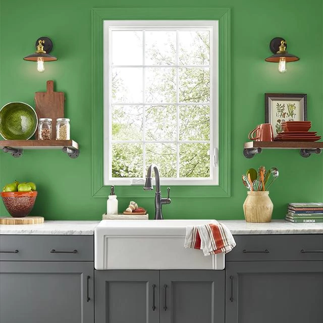 Kitchen painted in WATERED GRASS