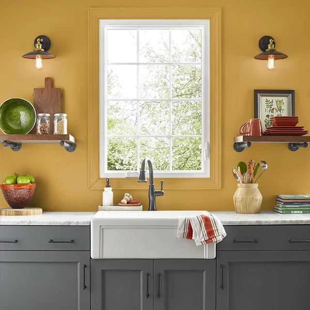 Kitchen painted in OCTOBER LEAF