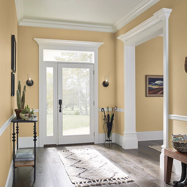 Foyer painted in LIONESS