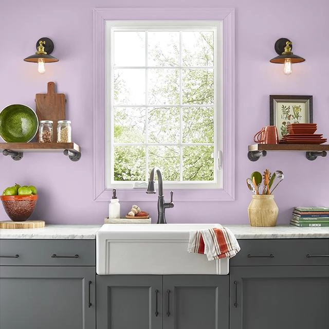 Kitchen painted in SHADY PINK