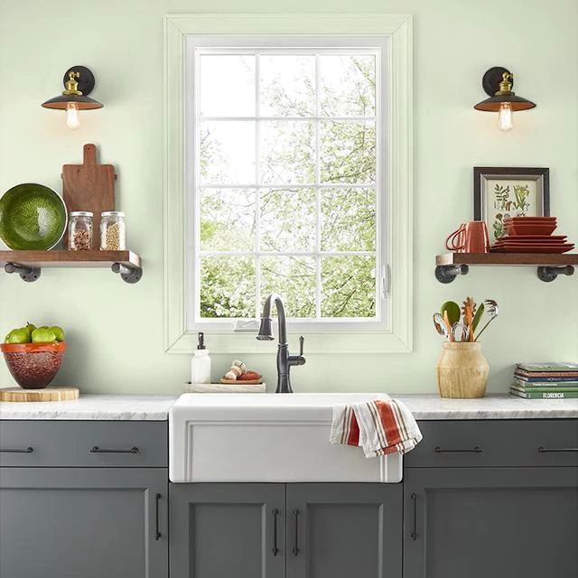 Kitchen painted in FOREST LIGHT