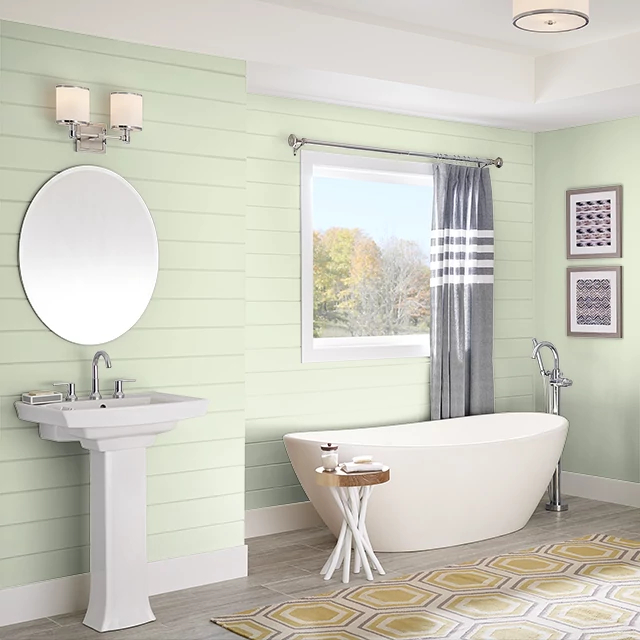 Bathroom painted in FOREST LIGHT