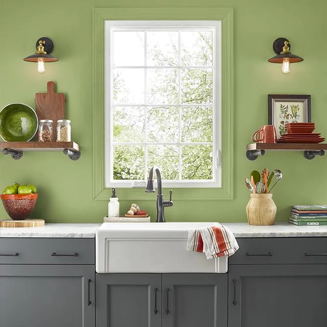 Kitchen painted in VITALITY