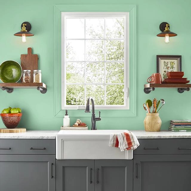 Kitchen painted in CAESAR SALAD