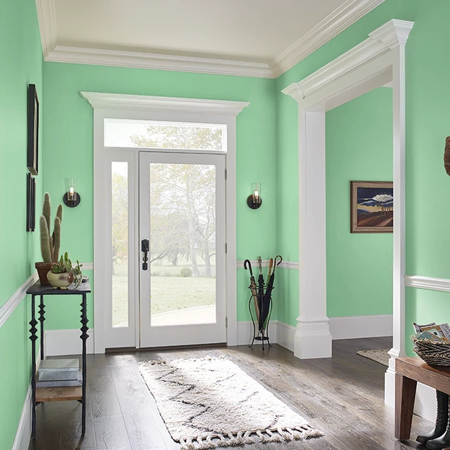Foyer painted in IGUANA