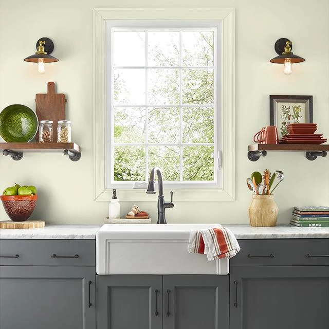 Kitchen painted in HEALING SPRINGS