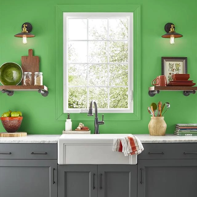 Kitchen painted in VIVID LIME