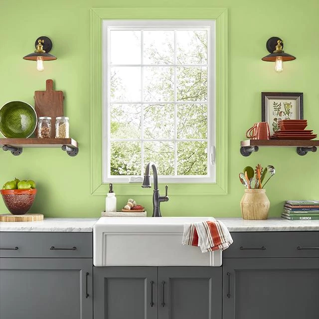 Kitchen painted in GREEN FLASH