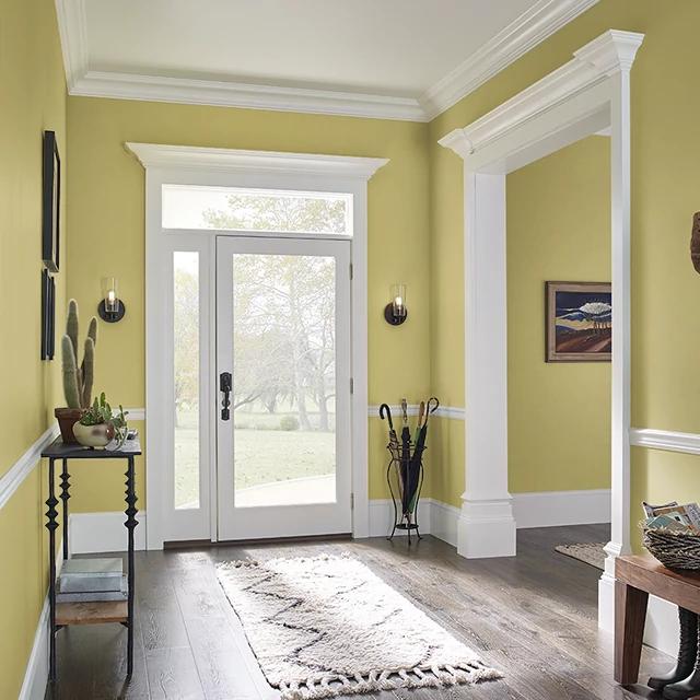 Foyer painted in CHAMELEON