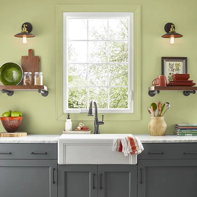 Kitchen painted in BURNISHED GREEN