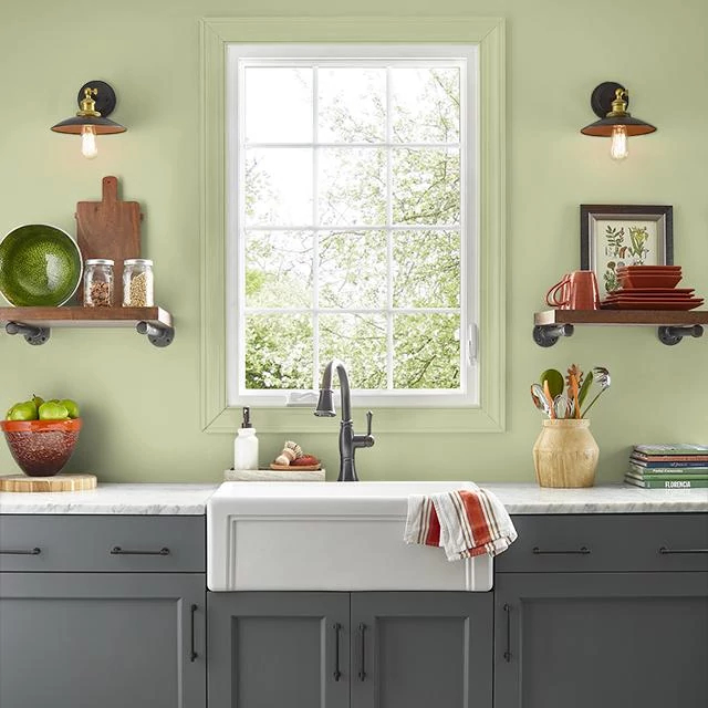 Kitchen painted in KIWI