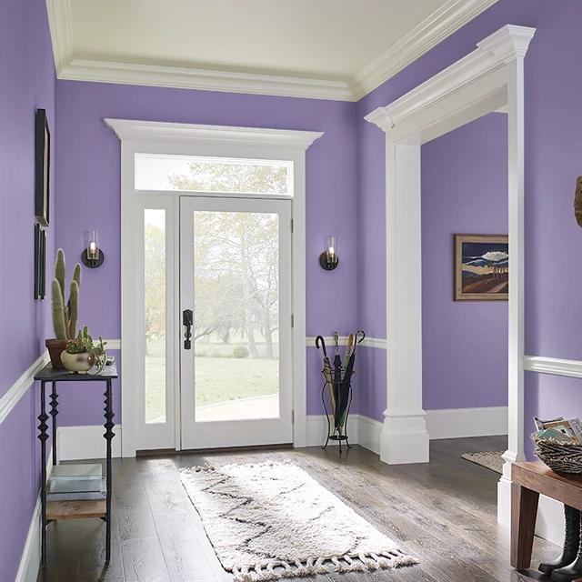 Foyer painted in BELLADONA