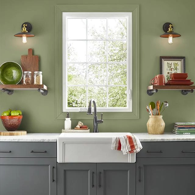 Kitchen painted in CAVERN MOSS