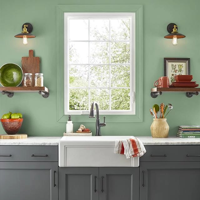 Kitchen painted in WILD THYME