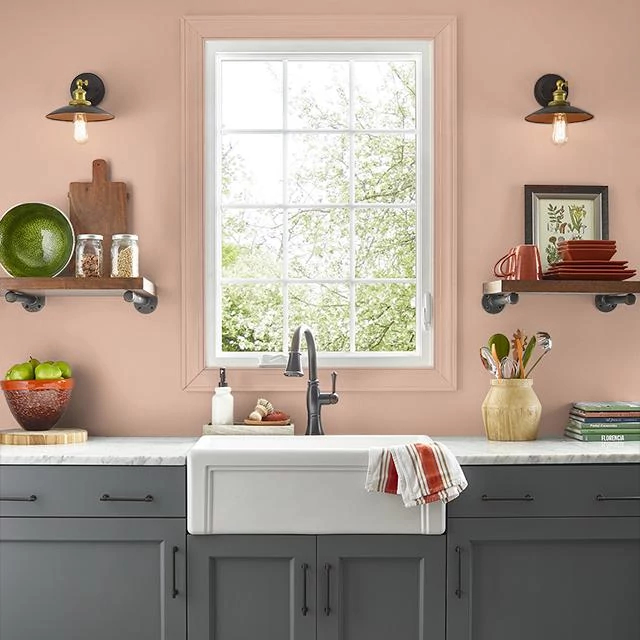 Kitchen painted in TAN BLUSH