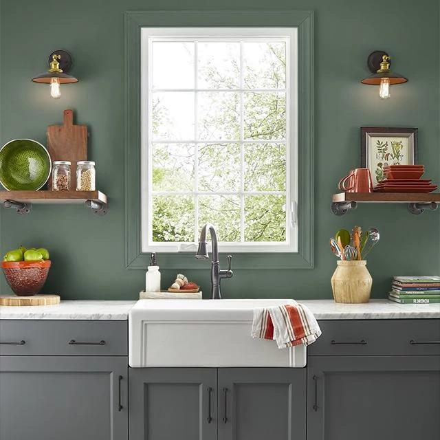 Kitchen painted in ALPINE VALLEY