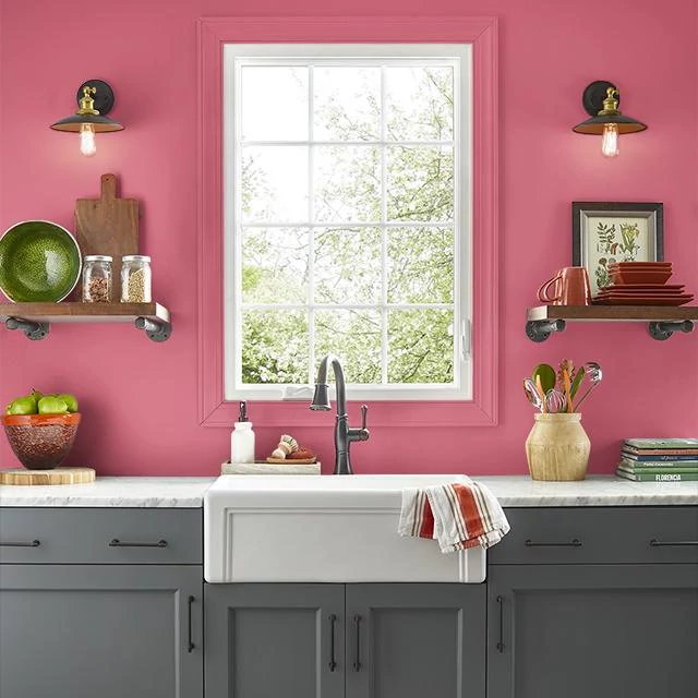 Kitchen painted in IBIS PINK