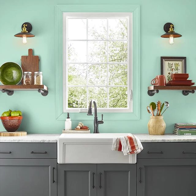 Kitchen painted in GREEN SURF