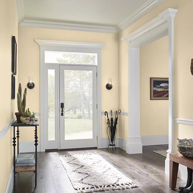 Foyer painted in LION'S ROAR