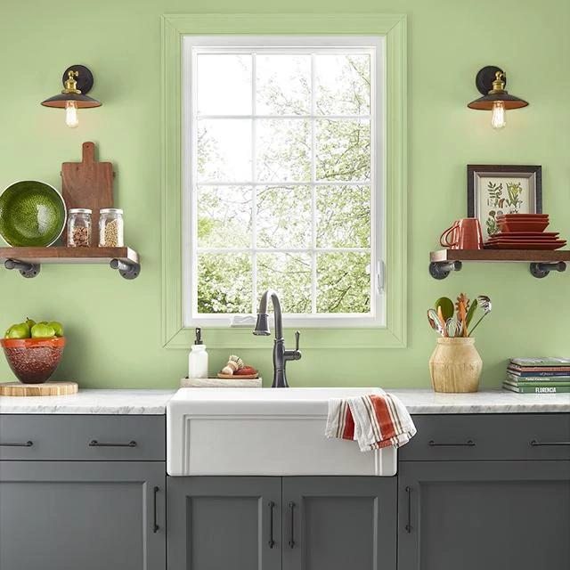 Kitchen painted in SUCCULENT GARDEN