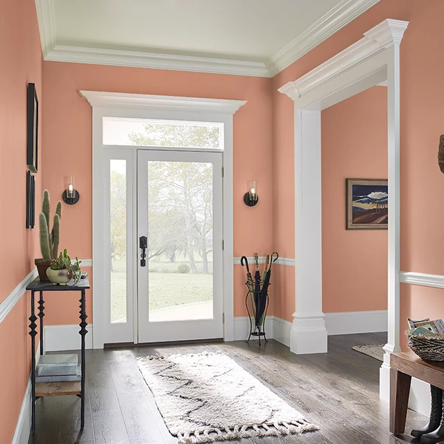 Foyer painted in INDIAN CURRY