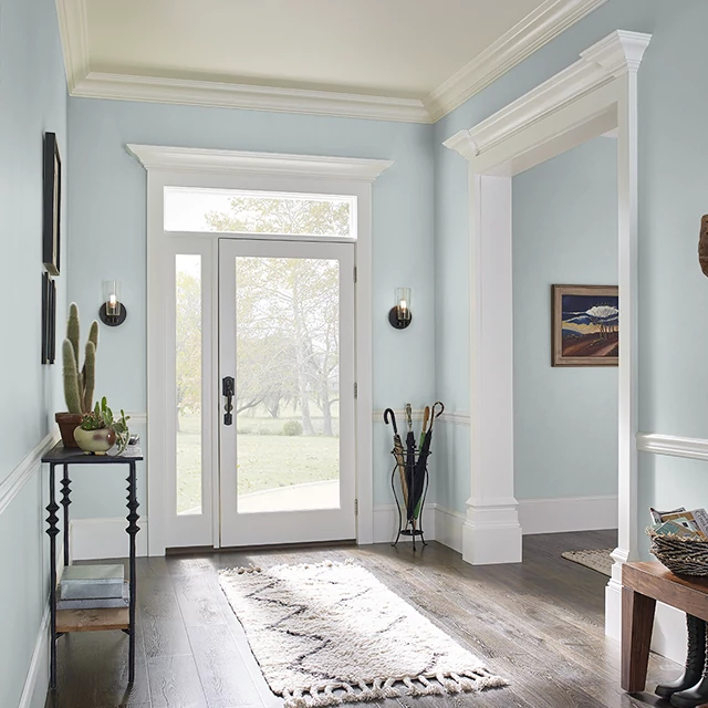 Foyer painted in WILD ARCTIC