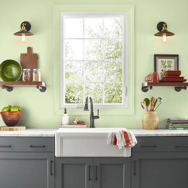 Kitchen painted in MELON EXTRACT