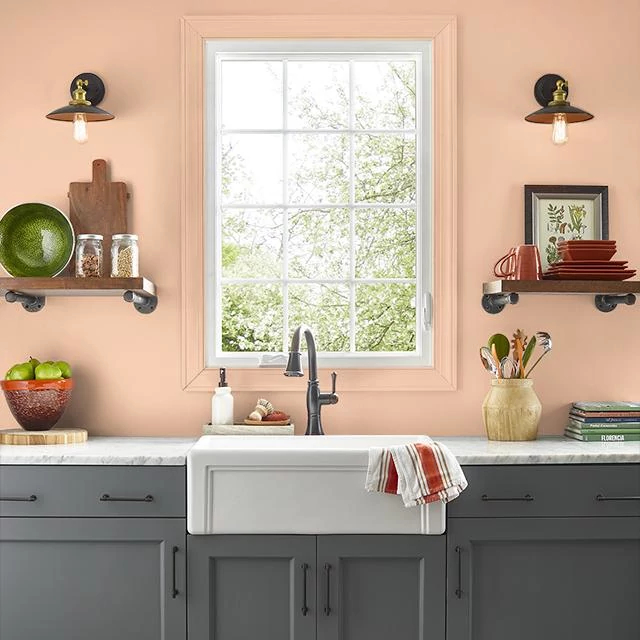 Kitchen painted in PETITE PEACH