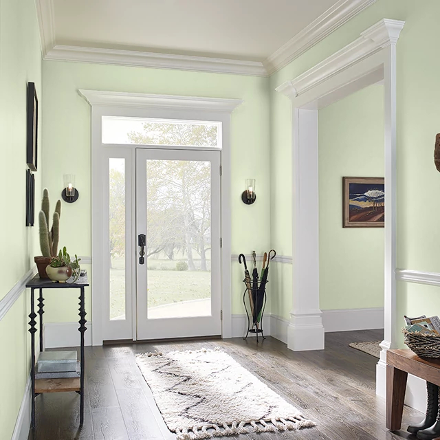 Foyer painted in BIRDCAGE