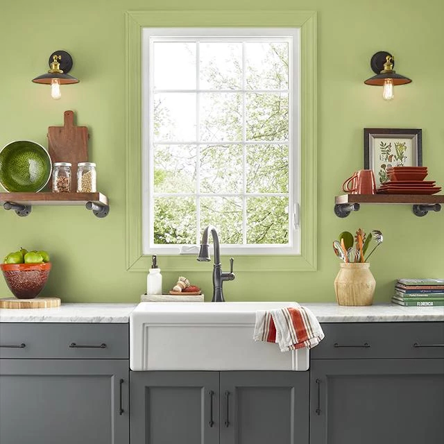 Kitchen painted in CANTEEN