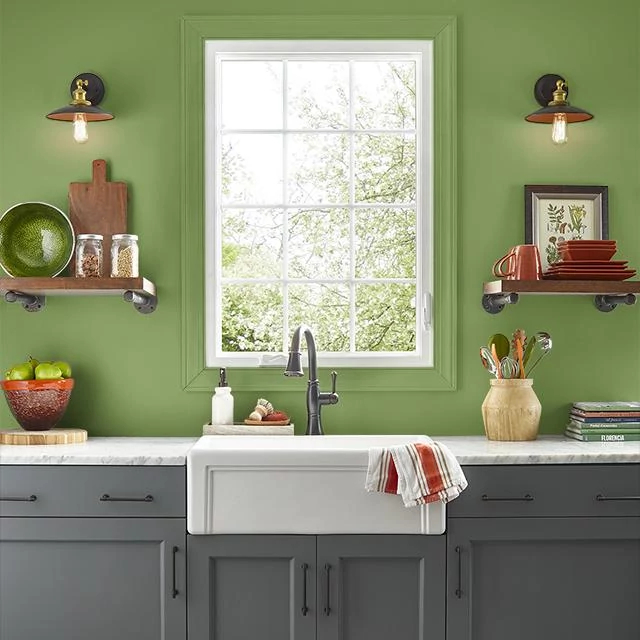 Kitchen painted in EMERALD SHIMMER