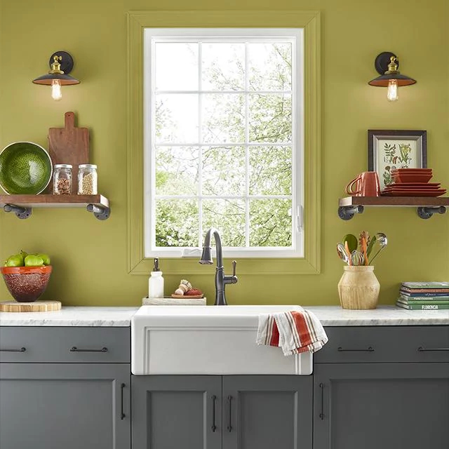 Kitchen painted in GREEN OF SPRING