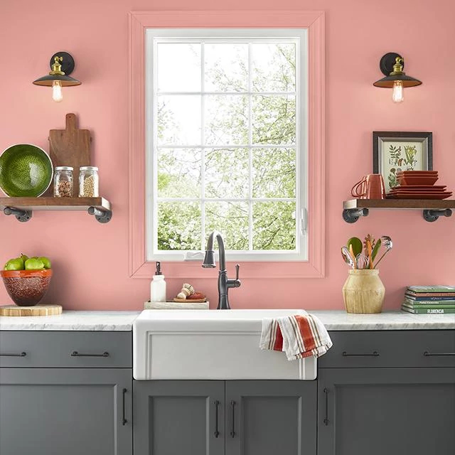 Kitchen painted in CORAL RIDGE