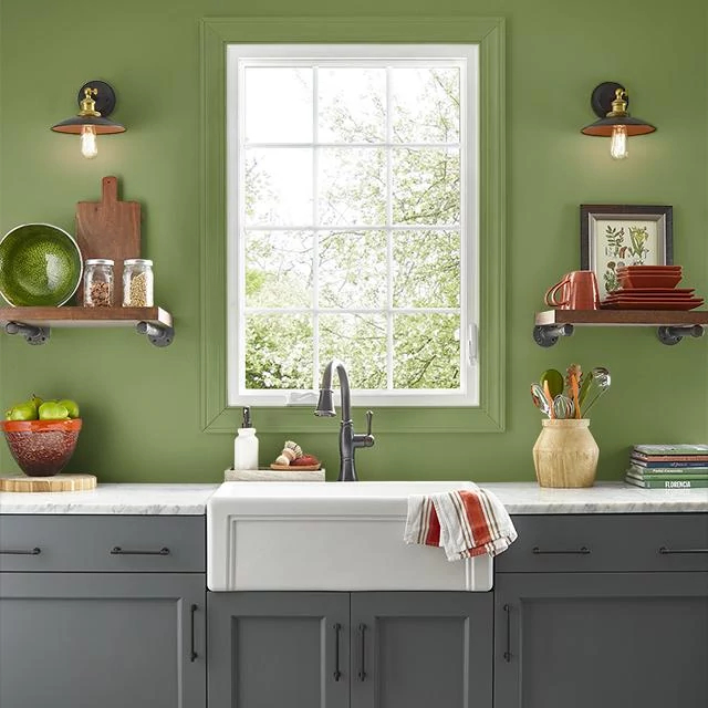 Kitchen painted in RECYCLE GREEN
