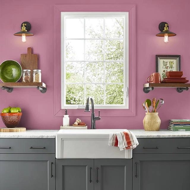 Kitchen painted in PEAKING PINK