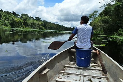 Amazon-Peru-06