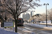 How will you get here? The ups and downs of transit in winter Image