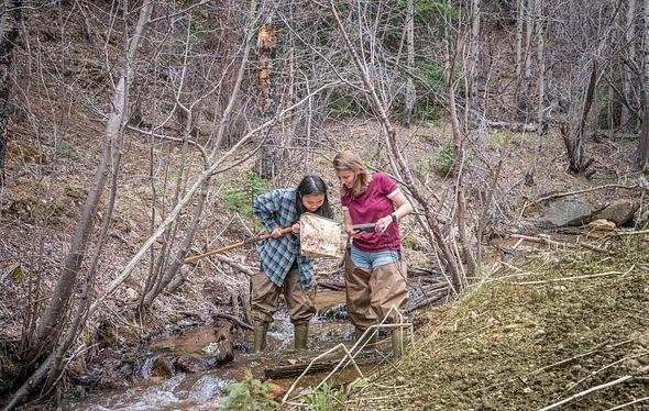 河缺陷研究