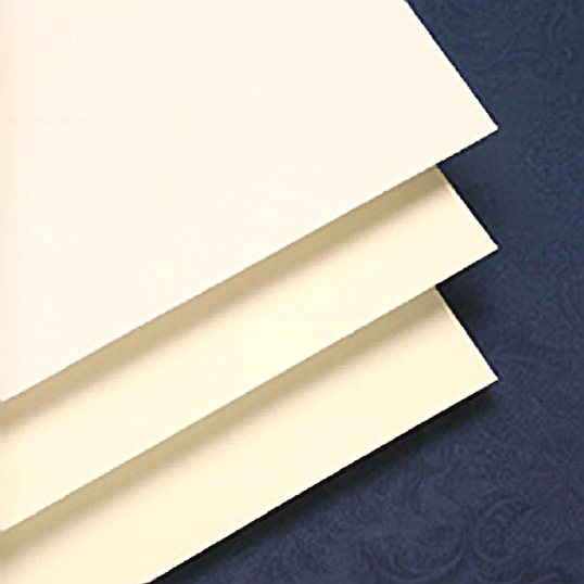 Gaylord Archival® 10 pt. Folder Stock (100-Pack)