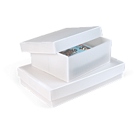 Gaylord Archival® Corrugated Polypropylene Shallow Lid Multipurpose Box