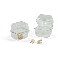 Gaylord® Clear PET Clamshell Dome Lid Archival Boxes (350-Pack)