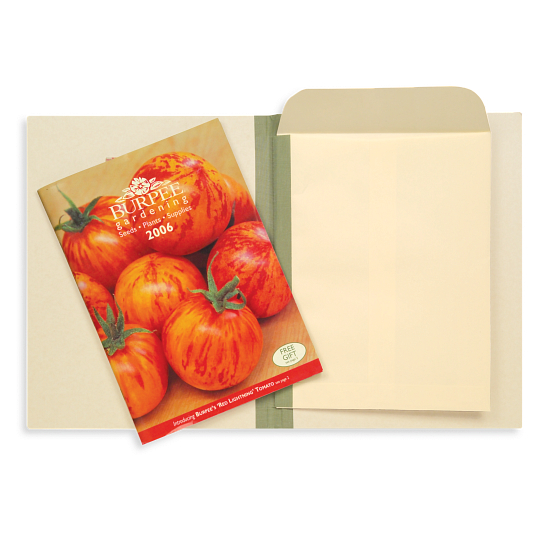 Gaylord® Envelope Binders (10-Pack)