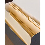 Gaylord Archival® Tabbed Index Dividers (12-Pack)