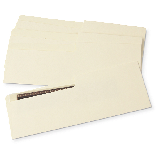Gaylord Archival® 80 lb. Unbuffered Text Negative Strip Envelopes (50-Pack)