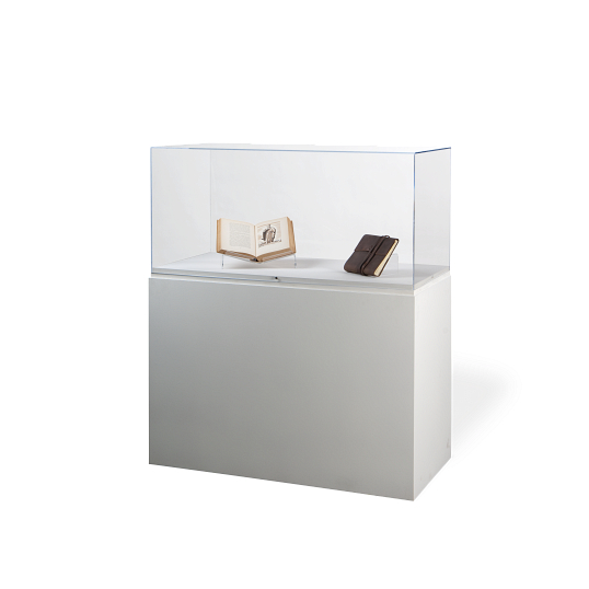 Gaylord Archival® Jewell™ Paintable Rectangular Pedestal Exhibit Case with UV Acrylic