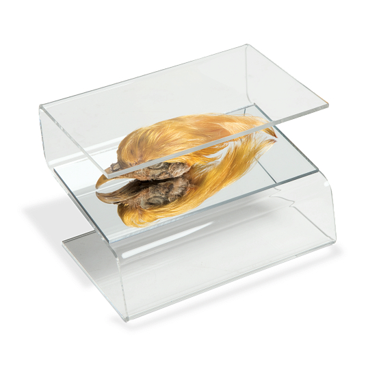 Jule-Art Mirrored Acrylic Display Z-Riser
